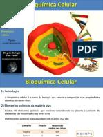 Aula de Bioquímica Celular