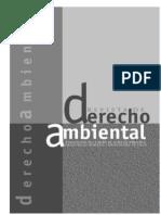 Revista de Derecho Ambiental 11