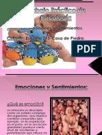 emocionesysentimientos-111013080635-phpapp02