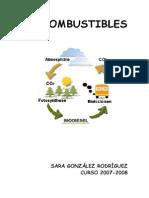 Biocombustible - Sara Gonzalez Rodriguez