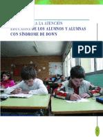 Guia Para La Atencion Educativa a Alumnos Con Sindrome de Down