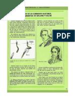 Ficha - Electricidad y Magnetismo - (21)