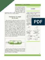 Ficha - Electricidad y Magnetismo - (29)