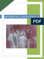 informe de laboratorio iii