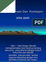 1. Gen Dan Kromatin Dan Kromosom(1)