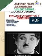 Phylum Platelmintos y Nematelmintos