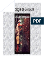 Microsoft PowerPoint - Borracha