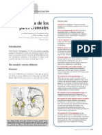 Elsevier Paralisis