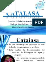 CATALASA