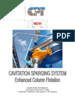 Column Flotation Systems With Cavitation Tube (1)