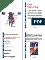 1 - Afecções Cardíacas