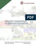 Analisis y Diagnostico de Serv. Culturales