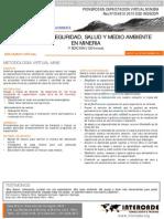 Gestion de Seguridad, Salud y Medio Ambiente en Mineria.