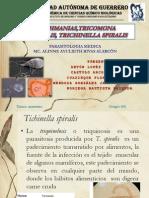 LEishmanias,Tricomona Vaginalis, Trichinella Spiralis