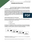Historia Natural Tuberculosis