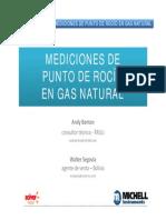 MICHELL - MEDICIONES DEWPOINT.pdf