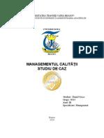 Proiect Managementul Calitatii - Szocs Daniel