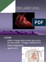 anatomi-jantung.ppt