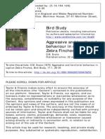 Zebra Finch Aggression
