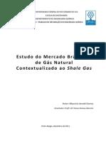 Estudo Mercado Gas Natural Brasil