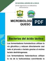 Microbiologia Del Queso2