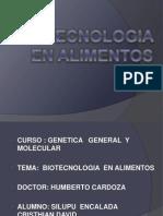 Biotecnologia en Alimentos