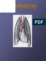 lungs pdf