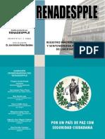 Estadísticas de Detenciones 2012-2013 (RENADESPPLE)