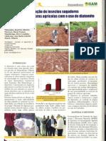 Regulação da população de insectos sugadores e minadores de culturas agrícolas com o uso de Diatomite