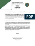Informe de Tutoria 2014