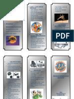 DBD Leaflet