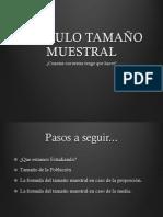 Resumen Calculo Del Tamaño Muestral