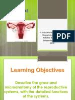 IT 5_ISS Female Reproductive Anatomy Translete