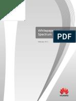 White Paper on Spectrum
