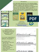 Permaculture Basics 1c