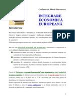 Suport Curs ID Interg Ec Eur 2013 v4