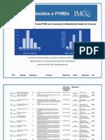 Sunsidios a PYMEs Misantla 2004-2009 IMCO