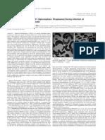 Fugassa et al. 2006 J Parasitology