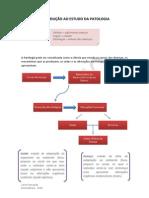 1. Introdução Ao Estudo Da Patologia