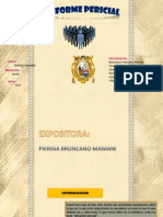 INFORME PERICIAL ppt
