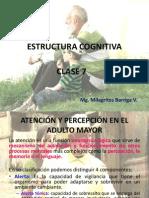 Clase 7 - Estructura Cognitiva