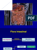 6 Flora Intestinal