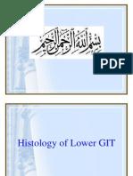 Histology of Lower GIT