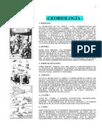La Geobiologia Terrestre Como Medio de Purificacion Del Buen Vivir