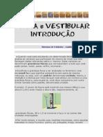 Análise Dimensional Net