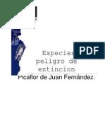 Picaflor de Juan Fernandez
