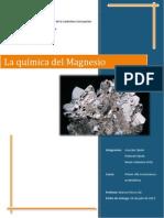 Informe Magnesio