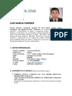Curriculum Luis Garcia p.-1 (1) (1)[1]