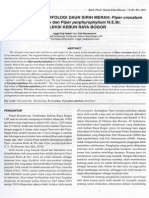 Karakteristik Morfologi Daun Sirih Merah Piper Crocatum Ruitz