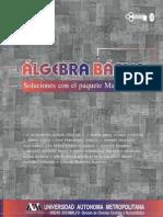 Álgebra Básica, Soluciones Con El Paquete Mathematica (2001)